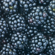 Stock Photo: Fresh Blackberries