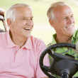 Stock Photo: Male Friends Enjoying Game Of Golf