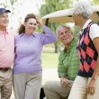 Royalty-Free Stock Photo: Portrait Of Four Friends Enjoying A Game Golf