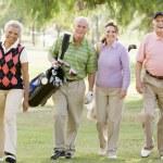 Portrait Of Four Friends Enjoying A Game Golf — Stock Photo