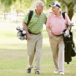 Stock Photo: Male Friends Enjoying A Game Of Golf