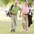 Male Friends Enjoying A Game Of Golf — Stock Photo #4785228