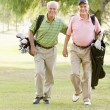 Male Friends Enjoying A Game Of Golf — Lizenzfreies Foto