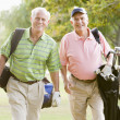Male Friends Enjoying A Game Of Golf — Stock Photo #4785229