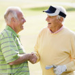 Male Friends Enjoying A Game Of Golf — Stock Photo #4785265