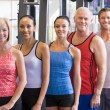 Portrait Of Men And Women At The Gym — Stock Photo #4785330