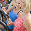 Personal Trainer Instructing Woman On Treadmill - Stock Photo