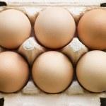 Fresh Eggs In Box — Stock Photo