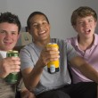 Foto Stock: Teenage Boys Drinking Beer