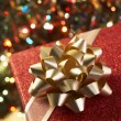 Christmas Present Under Tree — Stock Photo #4788518