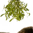 Couple standing beneath mistletoe - Stock Photo