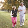 Senior Couple Power Walking In The Park - Stock Photo