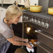 Woman Taking Food Out Of The Oven — Stock Photo #4789043