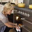 Woman Taking Food Out Of The Oven - Stock Photo