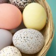 Stock Photo: Colorful Eggs In A Basket