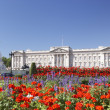 Stock Photo: Buckingham Palace With Flowers Blooming In Queen's Garden, L