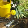 Watering Can And Trowel Next To Plants - Stock Photo