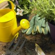 Watering Can And Trowel Next To Plants — Stock Photo #4789981