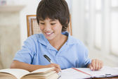 Boy Doing His Homework — Foto Stock