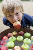 Young boy bobbing for apples — Stock Photo