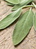 Sage Leaves On Chopping Board — Stockfoto