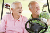 Male Friends Enjoying A Game Of Golf — Stock Photo