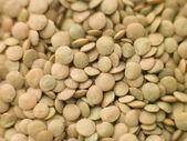 Green Lentils — Stock Photo