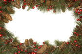 Christmas border of pine branches — ストック写真