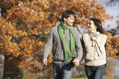 Young Couple Walking In Park Holding Hands — Stock Photo