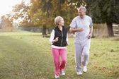 Senior Couple Power Walking In The Park — Stock Photo