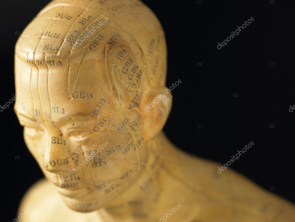 Meridian Lines On An Acupuncture Figurine — Stock Photo #4789662