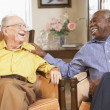 Foto Stock: Senior men relaxing in armchairs