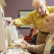 Stock Photo: Senior men using computer