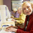 Senior woman using computer - Stock Photo