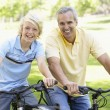 Father And Son Cycling Through A Park — Stock Photo