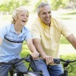 Father And Son Cycling Through A Park — Stock Photo #4794424