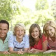 Couple And Their Teenage Children Lying On Grass — Stock Photo #4794447