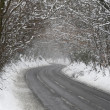 Country Road Lined With Snow And Skeletal Trees - Стоковая фотография