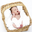 Newborn Baby In Basket — Photo