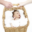 Newborn Baby Held In Basket By Parents — Stock Photo