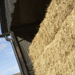 Stock Photo: Hay Bales Stored In Barn