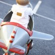 Baby Girl Riding In Toy Aeroplane — Stock Photo