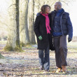 Couple On Autumn Walk — Stock Photo #4796849