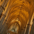 Gothic cathedral - Foto Stock