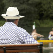 Spectator At Henley Regatta - ストック写真