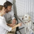 Couple Visiting Pet Dog — Stock Photo