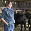 Portrait Of Vet In Barn With Cattle — Stock Photo