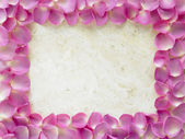 Rose Petal Photograph Frame — Stock Photo