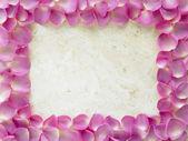 Rose Petal Photograph Frame — Stock Photo