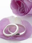 Silver Wedding Rings Resting On Rose Petals — Stock Photo